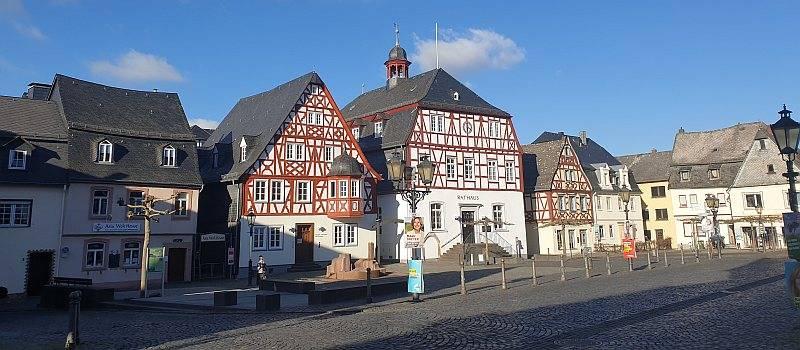 neo Landesverband Rheinland-Pfalz gegründet