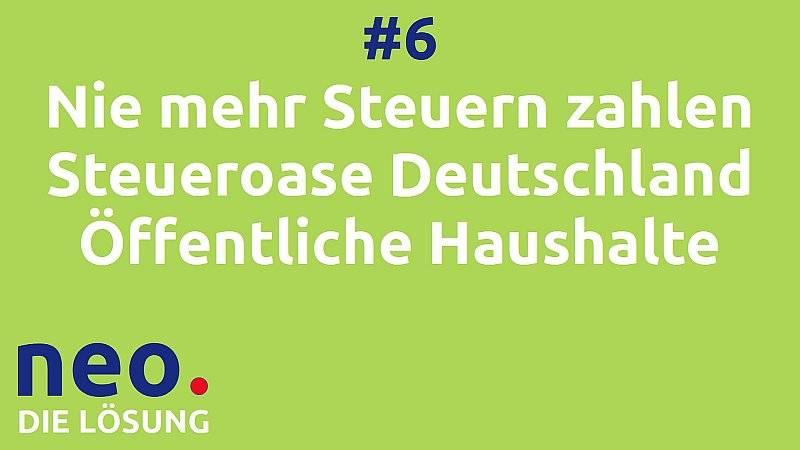 Video #6 Steueroase Deutschland (Steuersystem Teil 1: Finanzierung der öffentlichen Haushalte)